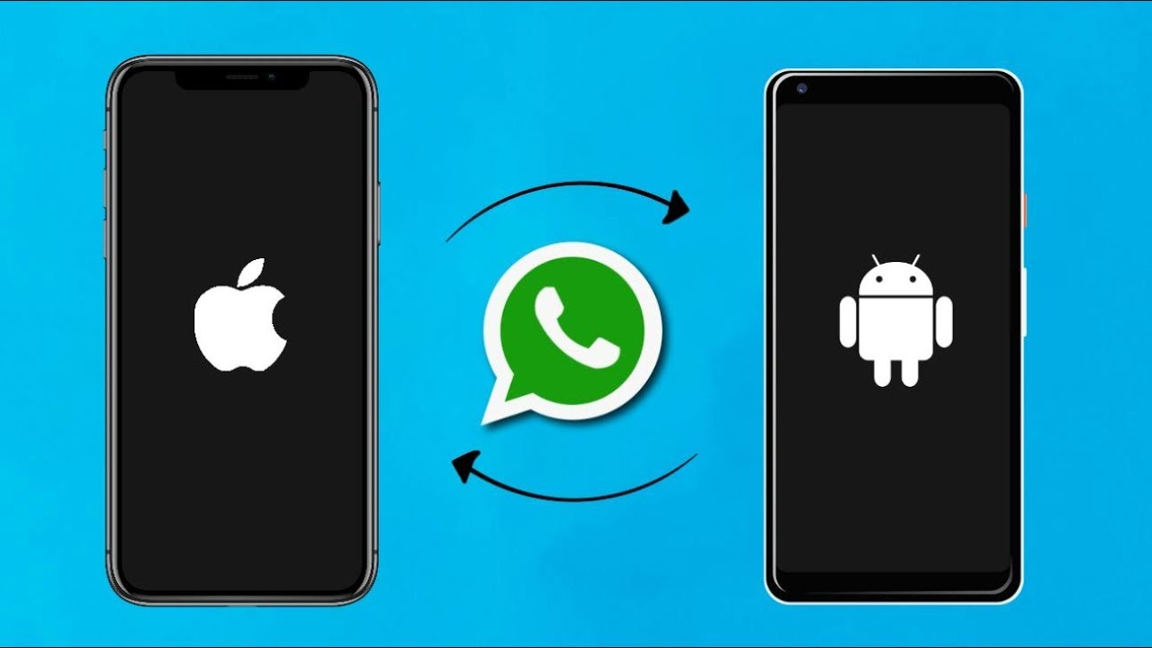How To Transfer WhatsApp Data From Android To iOS | Cashify Blog